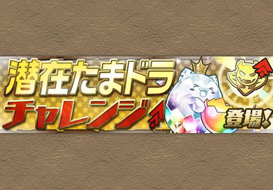 10月11日からスペシャルダンジョン「潜在たまドラチャレンジ」が登場!