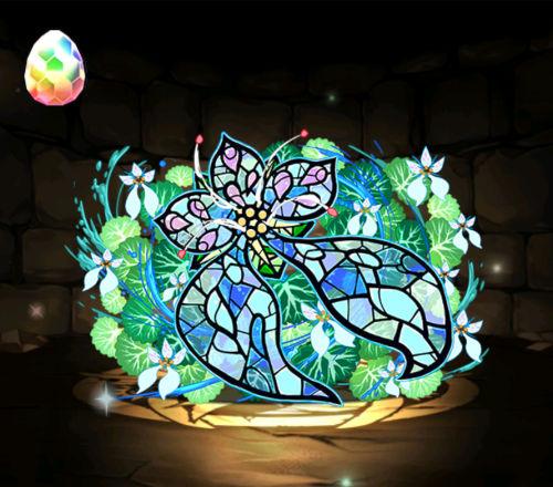 のっちの星を紡ぐ精霊ガチャ7回目 ユキノシタ