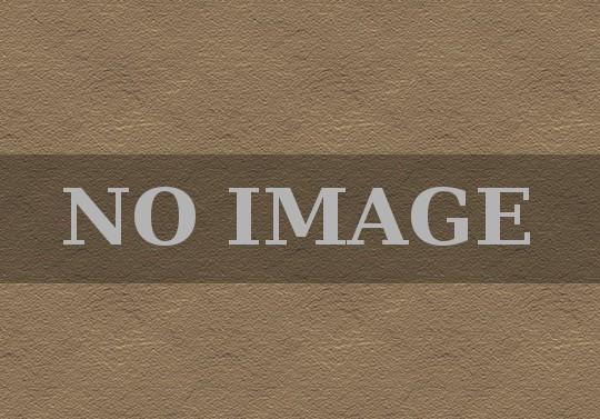 モンスター NO IMAGE