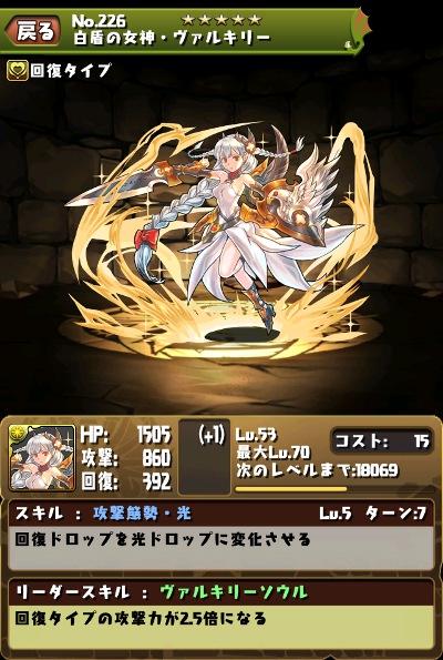 白盾の女神・ヴァルキリー スキルレベル5