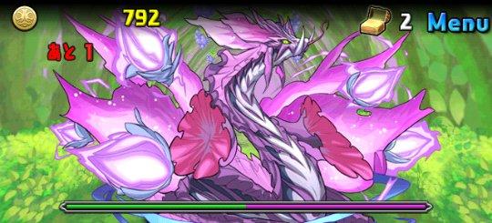 紫の華龍 中級 ボス 紫の華龍・オーキッド