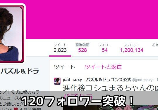 【日本で21位】公式Twitter・ムラコのフォロワーが120万を突破!