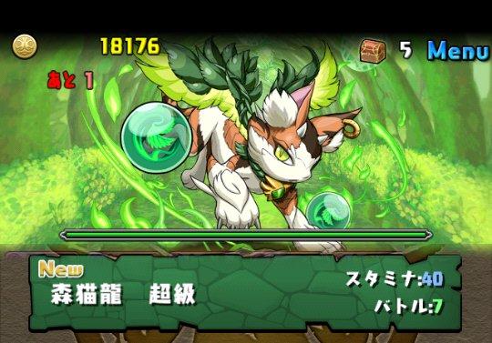 木の猫龍【火なし】 超級 攻略&ダンジョン情報