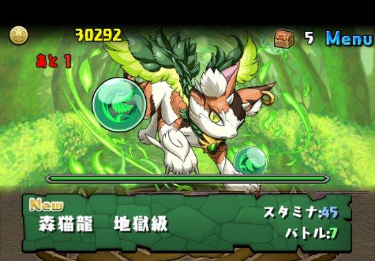 木の猫龍【火なし】 地獄級 攻略&ダンジョン情報