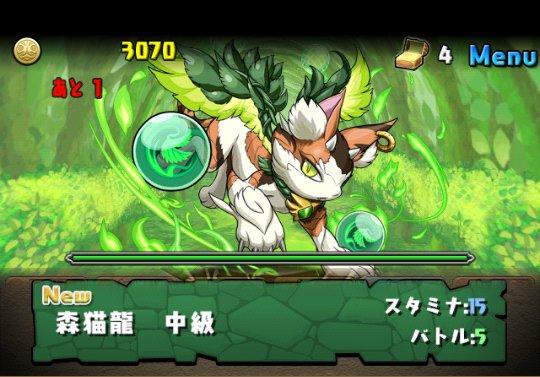 木の猫龍【火なし】 中級 攻略&ダンジョン情報