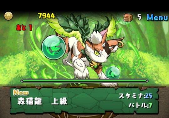 木の猫龍【火なし】 上級 攻略&ダンジョン情報