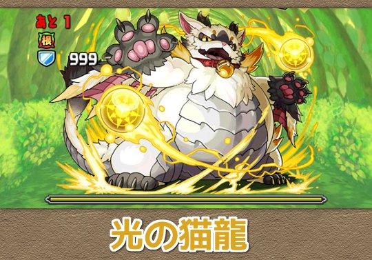 光の猫龍【闇なし】 ヘッダー