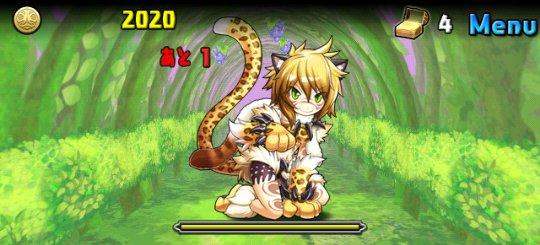 闇の猫龍【光なし】 上級 6F フウ
