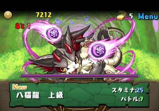 闇の猫龍【光なし】 上級 攻略&ダンジョン情報